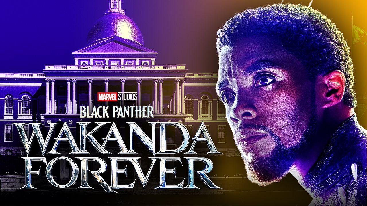 Black Panther Wakanda Forever Chadwick Boseman