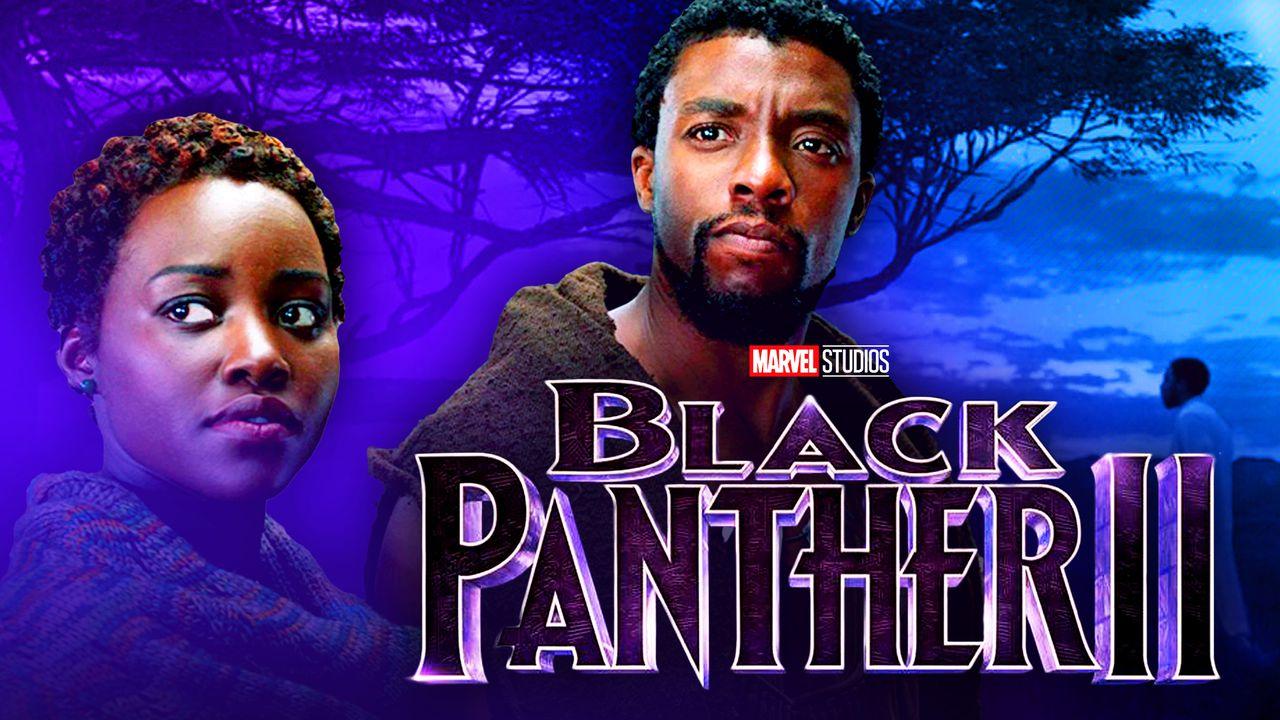 Black Panther, T'Challa, Chadwick Boseman, Black Panther 2, MCU, Marvel