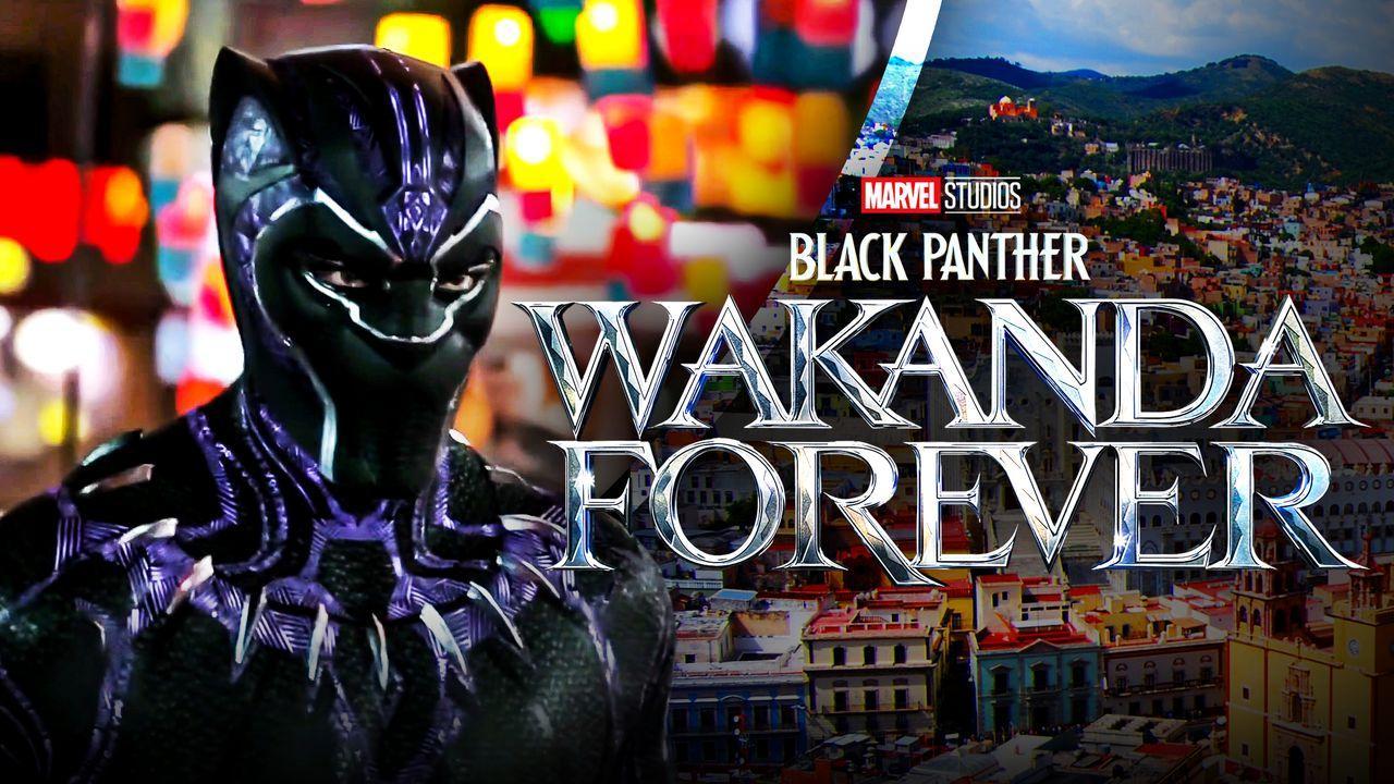 black-panther-2-wakanda-forever