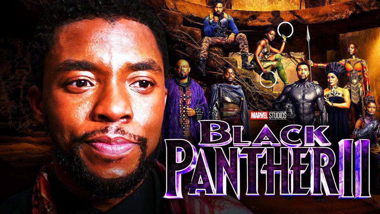 Chadwick Boseman Black Panther Cast