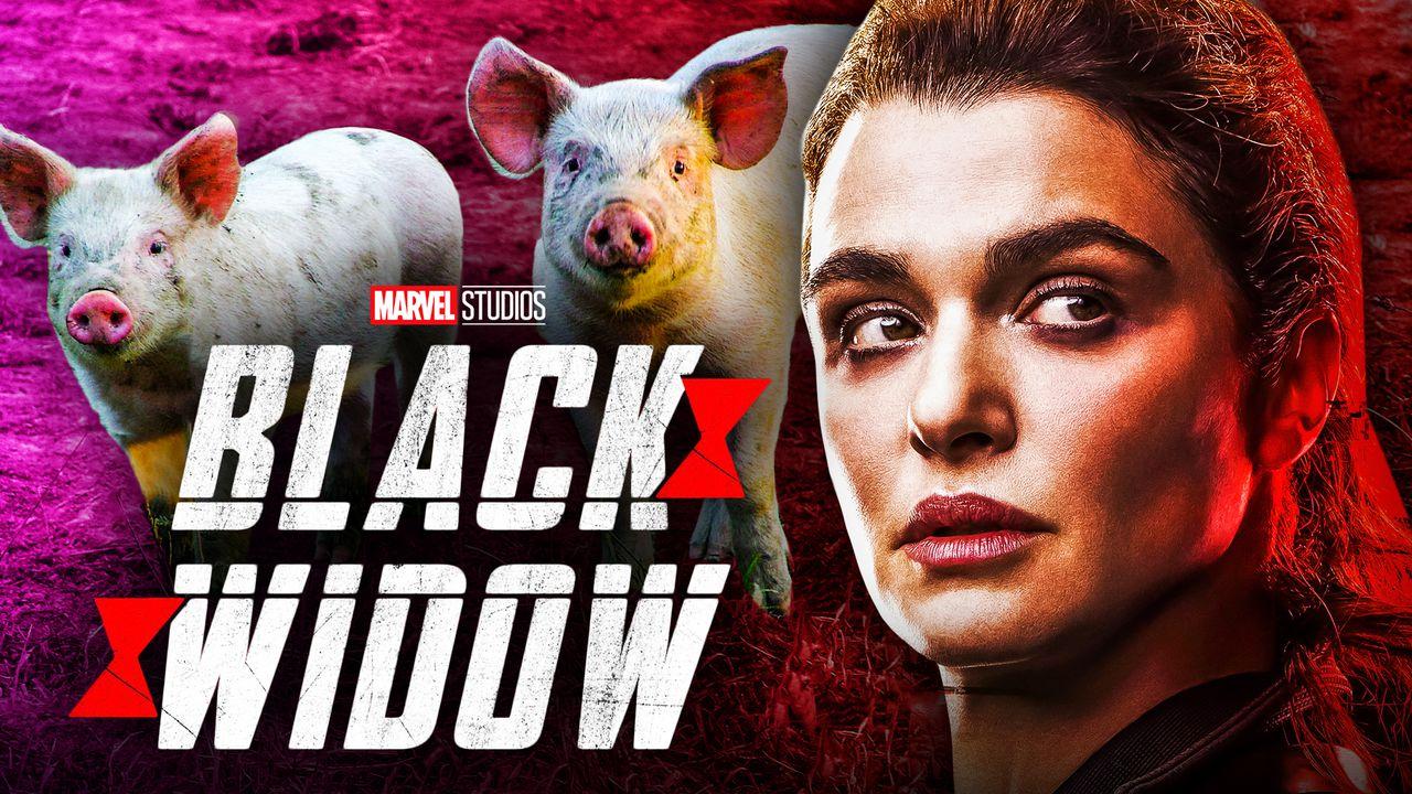 Black Widow Rachel Weisz