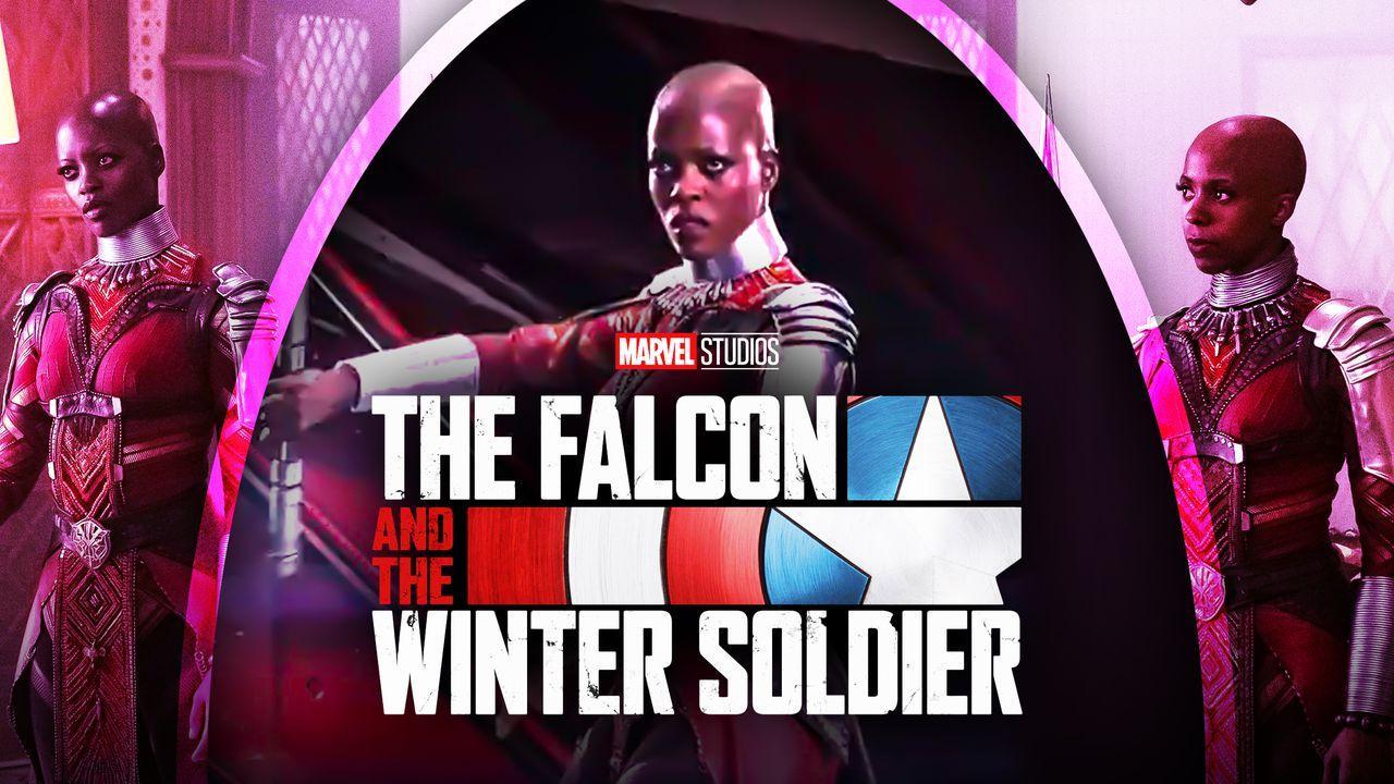 Falcon and Winter Soldier Wakanda Dora Milaje