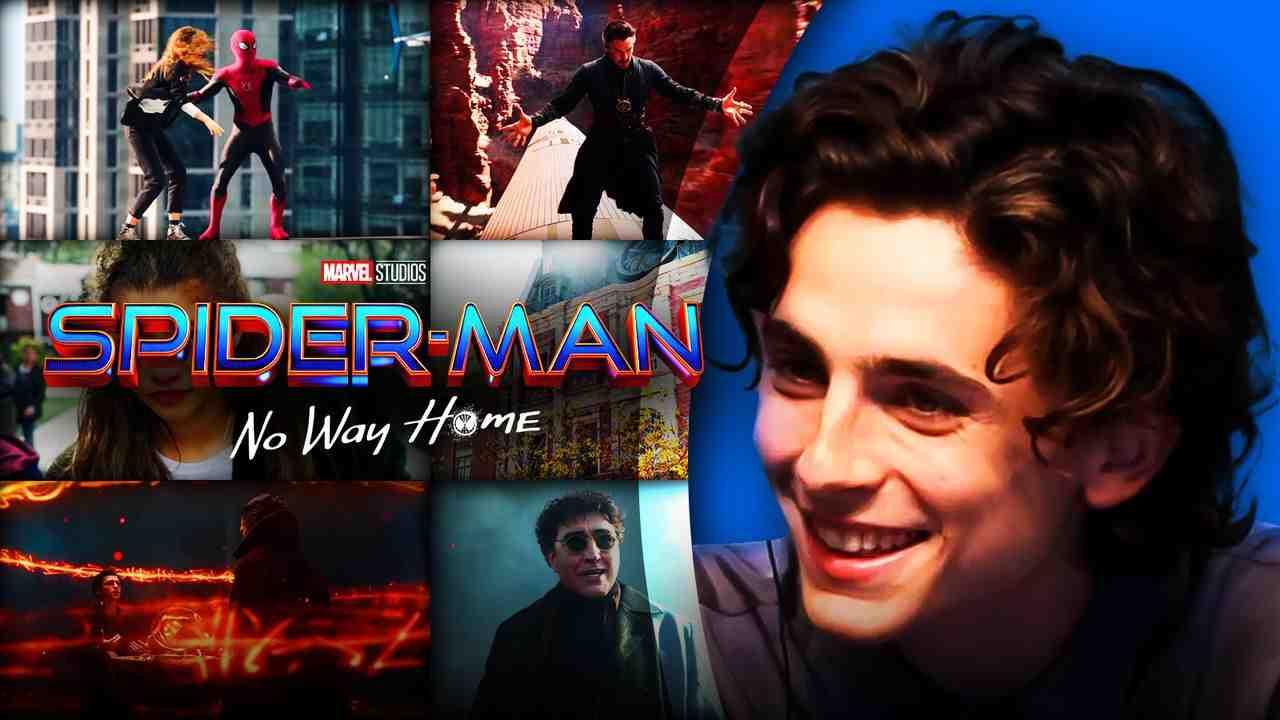 Spider-Man: No Way Home, Timothée Chalamet