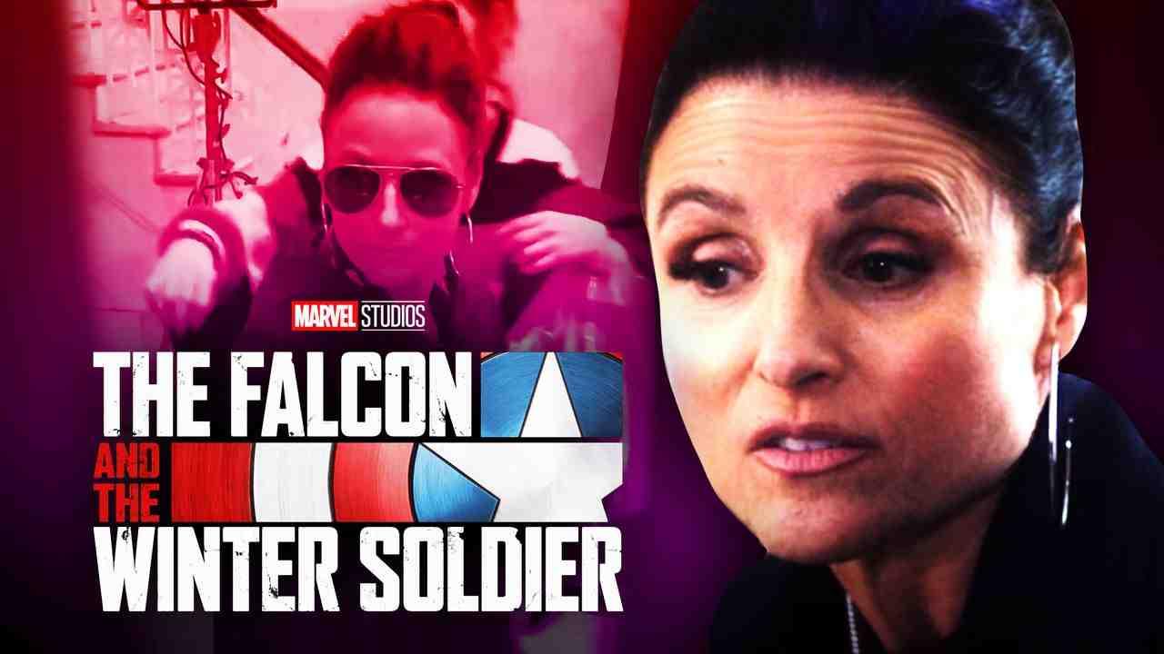 Julia Louis-Dryfus, Falcon and Winter Soldier