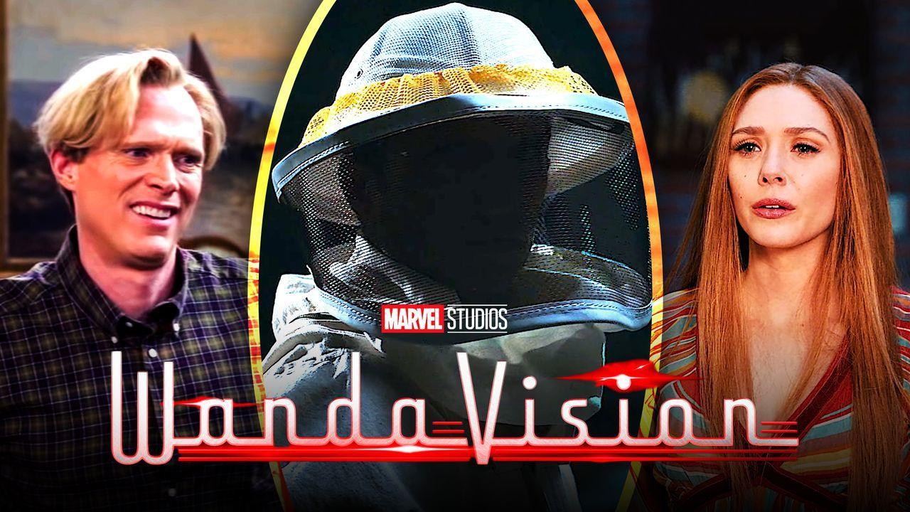 WandaVision logo, Elizabeth Olsen as Wanda, Paul Bettany as Vision, Beekeeper