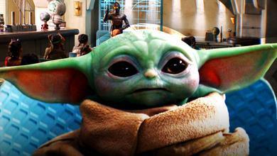 Baby Yoda, School