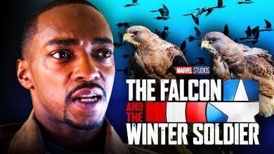 Anthony Mackie Birds Falcon and Winter Soldier