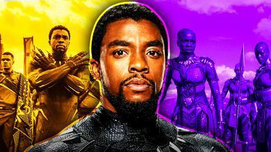 Chadwick Boseman, Black Panther, Dora Milaje