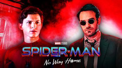 Spider-Man, Daredevil