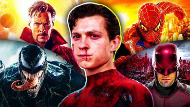 Spider-Man No Way Home, Daredevil, Venom, Doctor Strange, Tom Holland