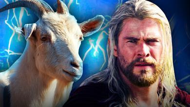 Thor Land goat